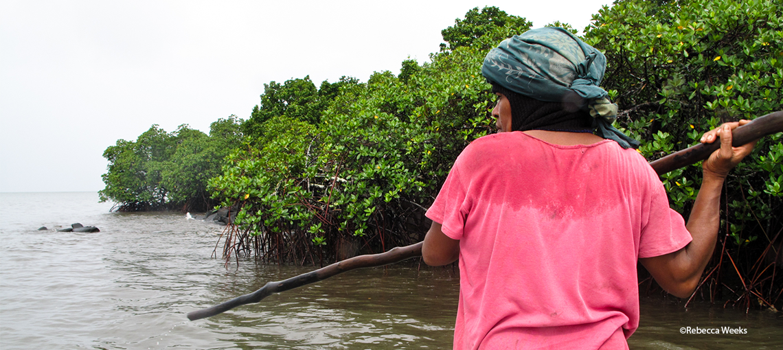 Helping women fishers protects mangrove forests and fisheries livelihoods