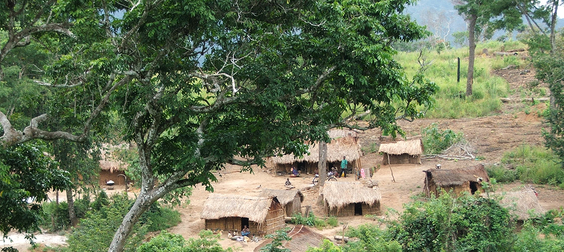 Kabobo Wildlife Reserve Helps Secure Nature and Indigenous Livelihoods, in DR Congo