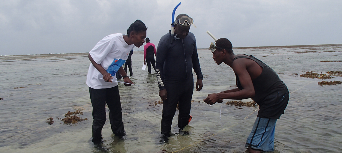 Effective Community Management Restores Degraded Reefs